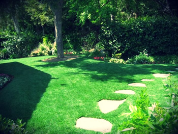 synthetic lawn with stone walkway and shrubbery