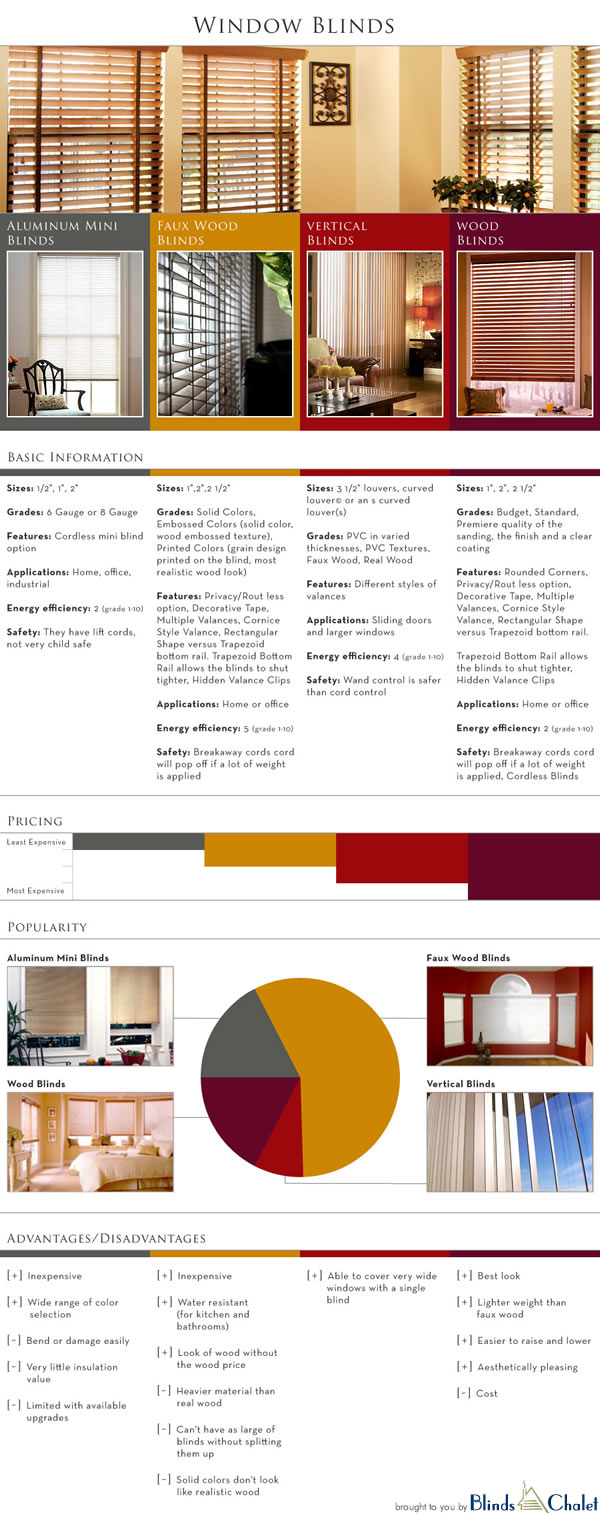 Window Blinds Infographic
