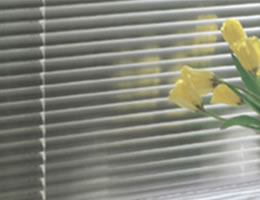 "Jewel 1"" Aluminum Mini Blinds"