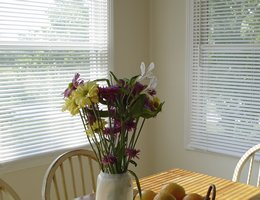 Cream Classic 1 inch Aluminum  Mini Blinds