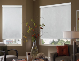 Green Signature Light Filtering Roller Shades