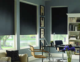 Classic Room Darkening Blackout Roller Shades
