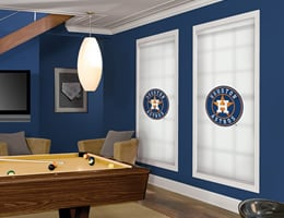 Grey Houston Astros Roller Shades