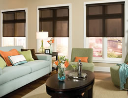 White EcoGreen Solar Screen Shades