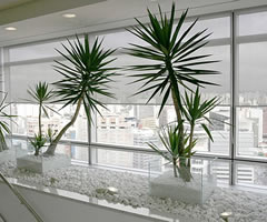 Smart Weave 7% Screen Roller Shades