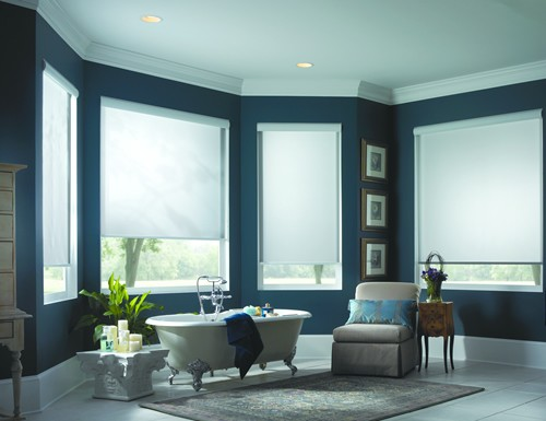 Modern Eco Solar Screen Shades