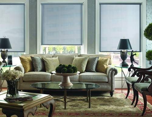 Chestnut Modern Solar Screen Shades