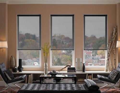 Chestnut Basics Screen Roller Shades