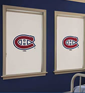 NHL® Window Shades